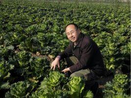 Hengrong Organic Farm